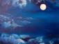 Mondwelt